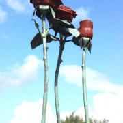 roses-main