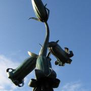 bluebells-main